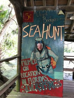 Sea Hunt overlook at Silver Springs State Park