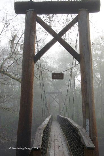Foggy morning at the swinging bridge in O'leno State Park, FL
