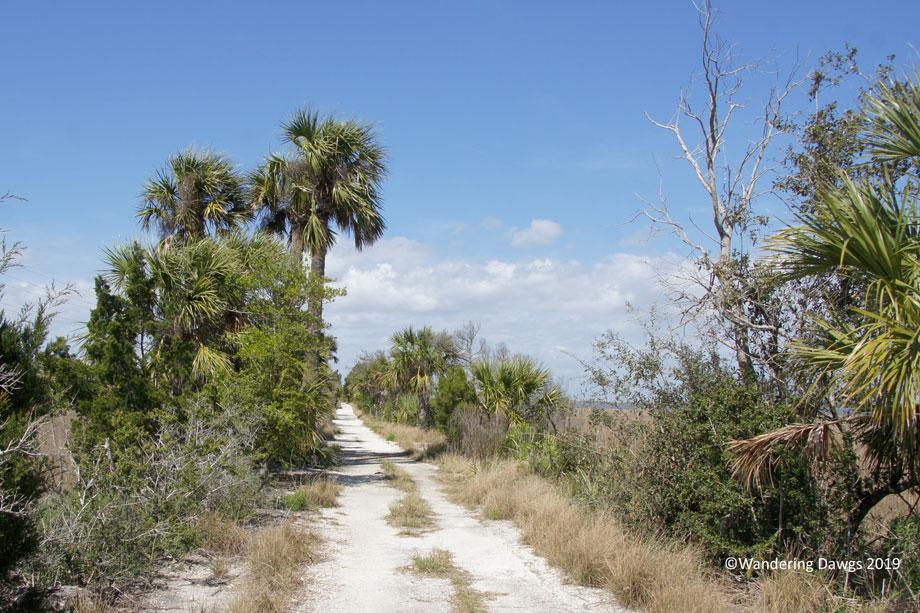 20190310-Rails-to-Trails-(11)