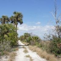 McQueen's - Tybee Island Trail