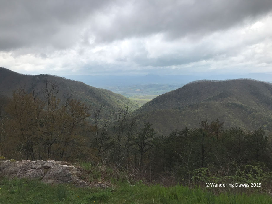 20190419-Blue-Ridge-Parkway-IPhone-(1)