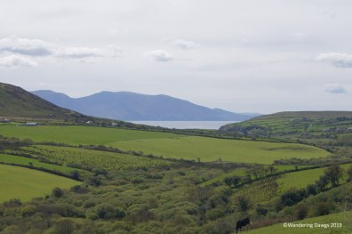Dingle Peninsula, west coast of Ireland