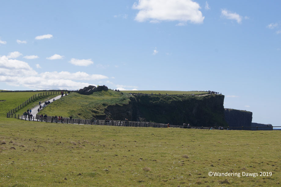 20190504-Cliffs-of-Moher-(19)