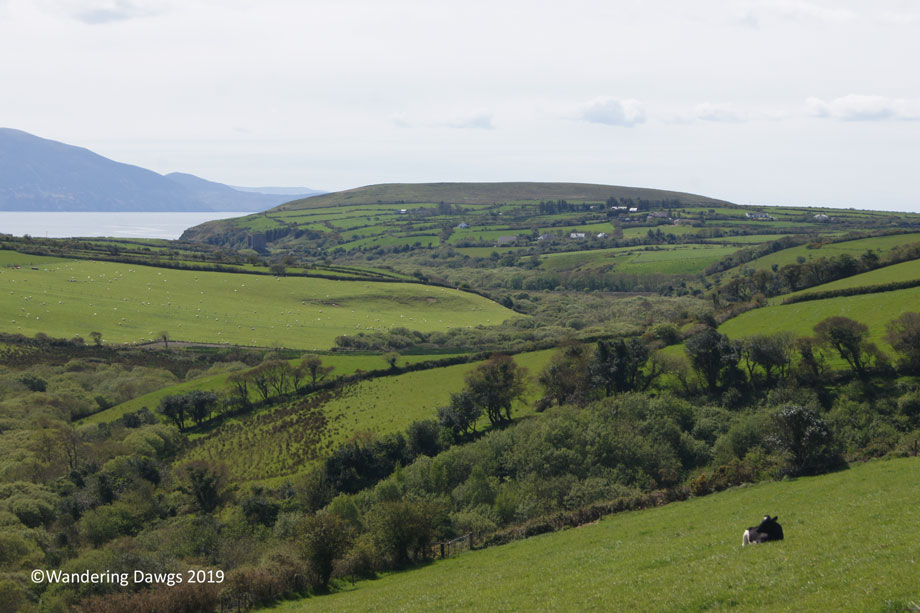 20190506-Dingle-Sony-(23)