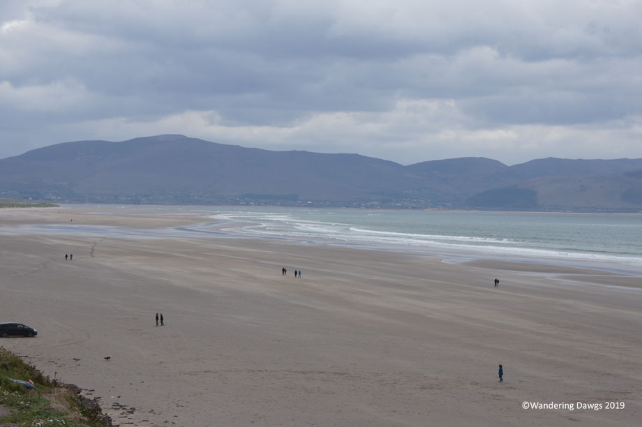 20190507-Day-7-Dingle-Peninsula-Sony-(74)