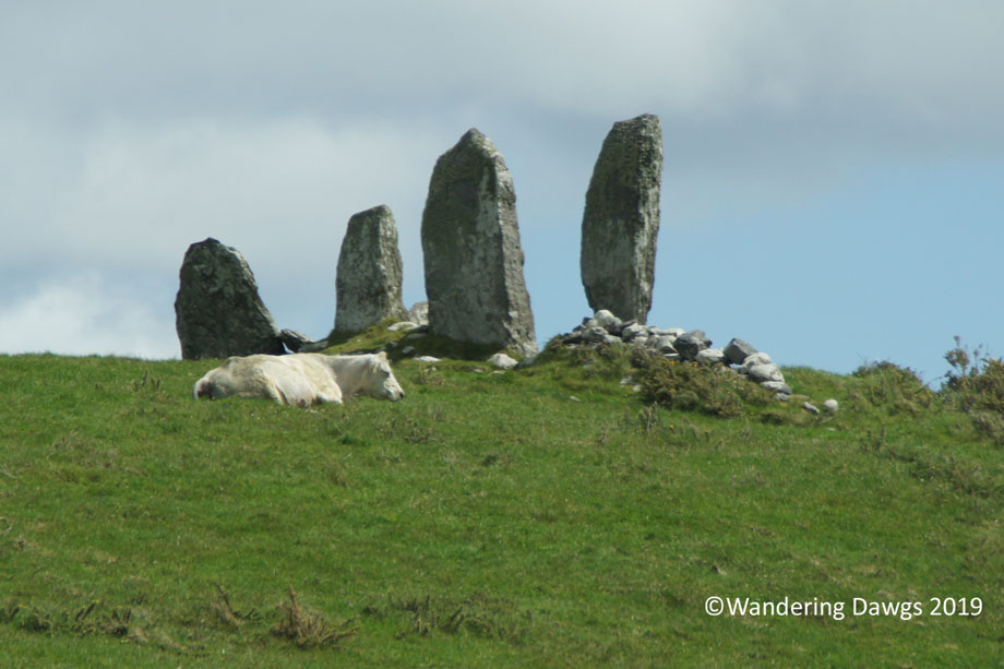 20190509-Day-9-Ring-of-Kerry-Sony-(154)
