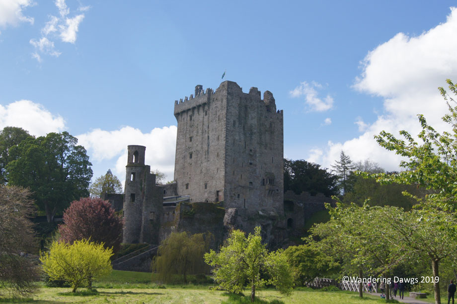 20190511-Day-11-Blarney-Stone-Henrys-birthday-Sony-(48)