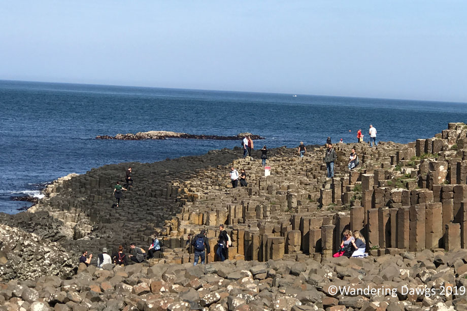 20190514-Day-14-Giants-Causeway-Tour-IPhone-(16)