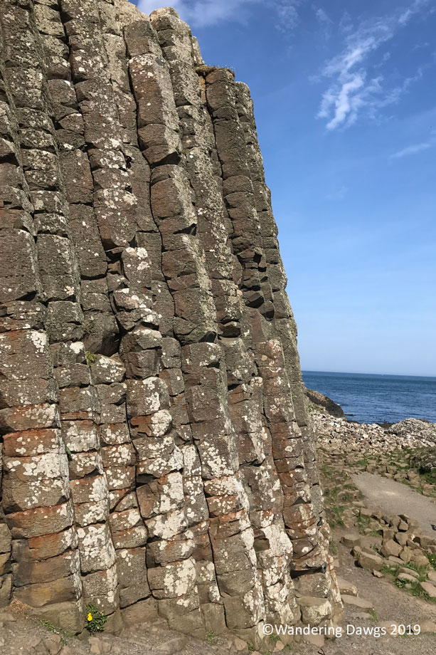 20190514-Day-14-Giants-Causeway-Tour-IPhone-(8)