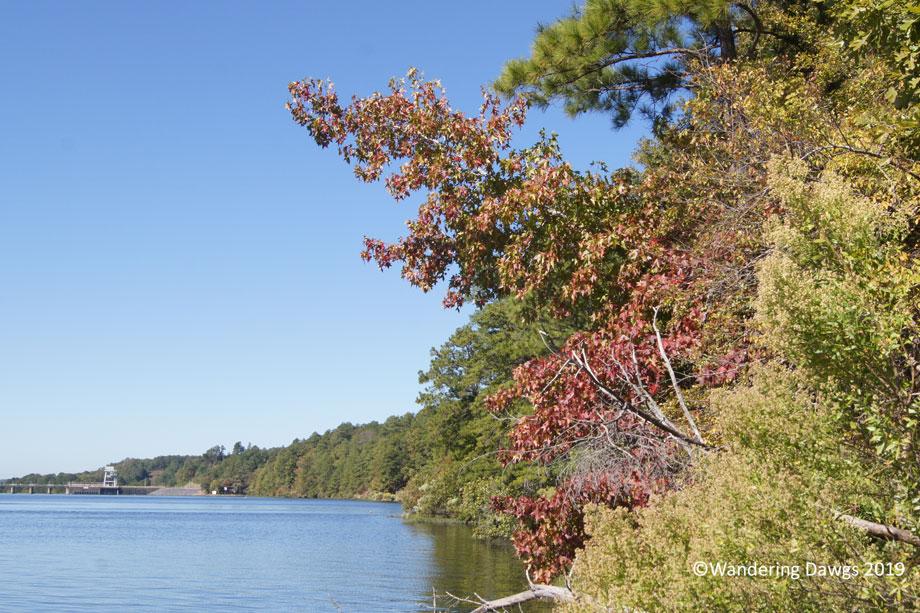20141024Deerlick-Creek-(9)