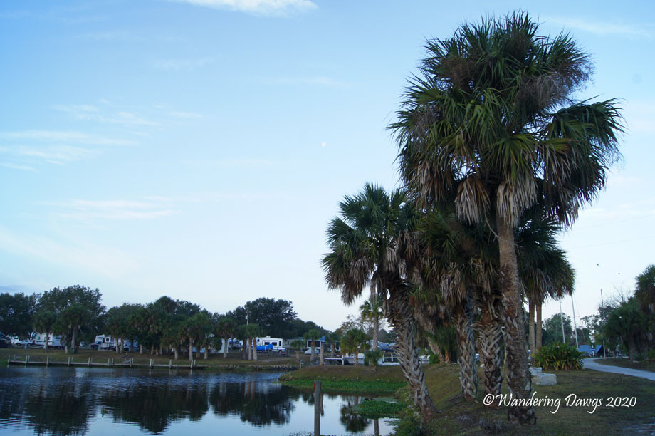 20120113The-Glades-(1)