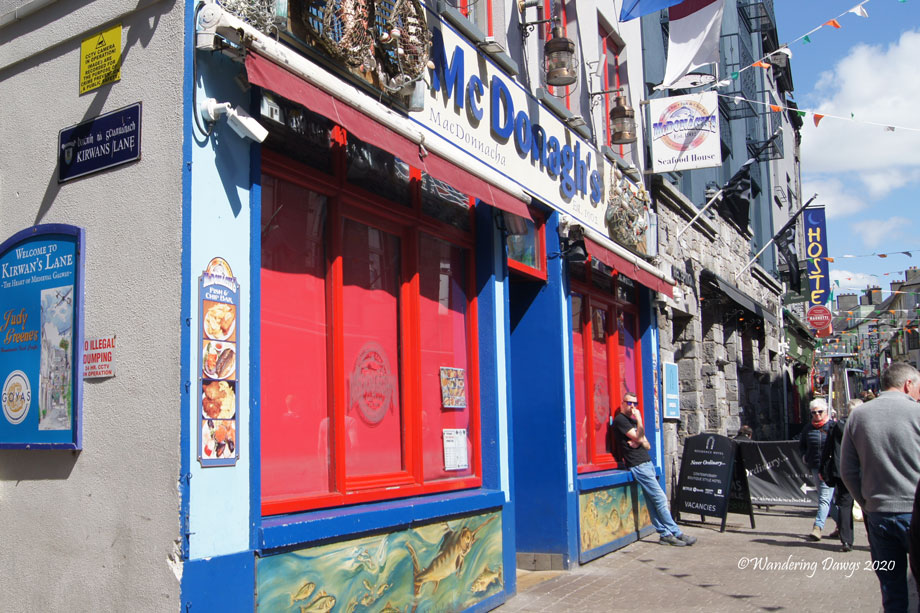 20190505-Galway-(49)