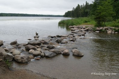 The Headwaters of the Mississippi River in Itasca State Park, Minnesota